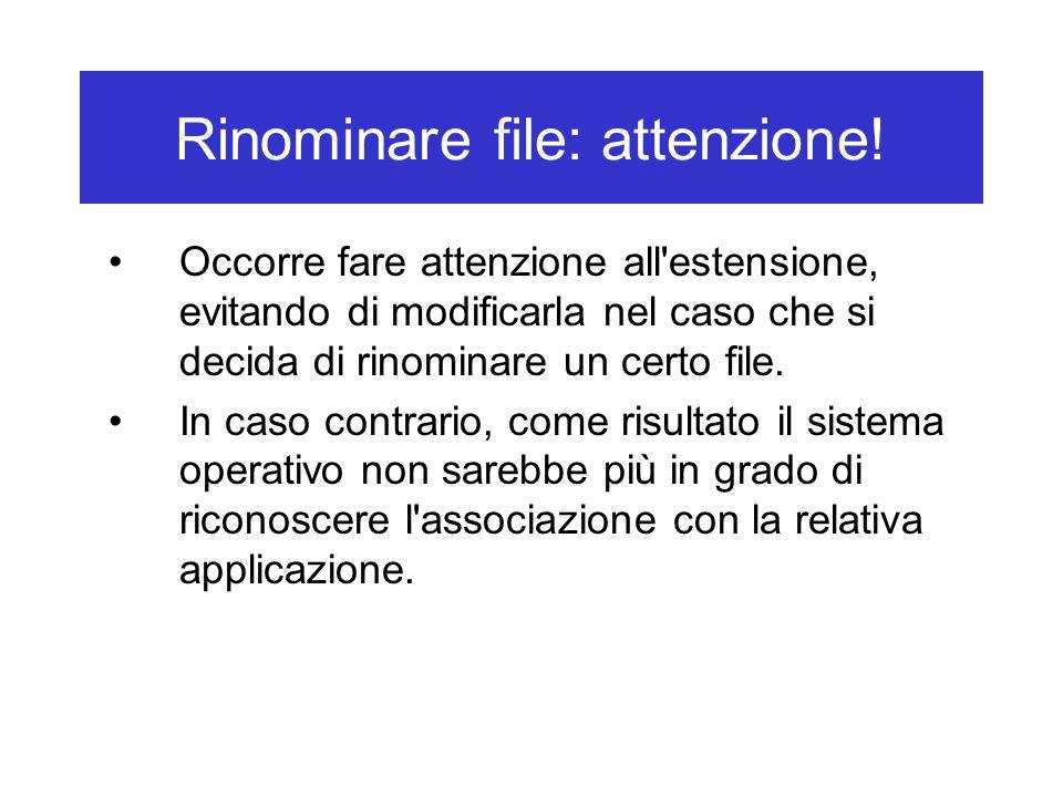 Rinominare file: attenzione! Occorre fare attenzione all'estensione, evitando di modificarla nel caso che si decida di rinominare un certo file. In ca