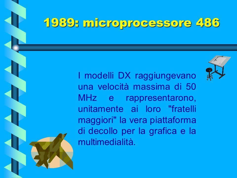 Esistono 4 diversi modelli dei processori 80486: gli SX, i DX, i DX2 e i DX4, più alcuni modelli a basso consumo energetico come gli SL. Anche il proc