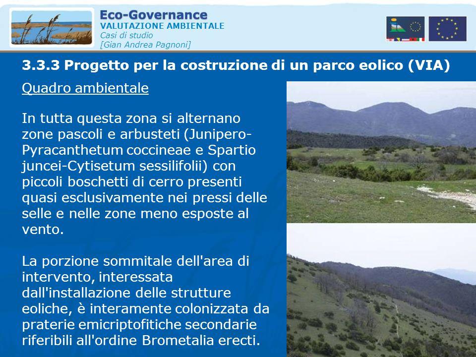 VALUTAZIONE AMBIENTALE Casi di studio [Gian Andrea Pagnoni] Quadro ambientale In tutta questa zona si alternano zone pascoli e arbusteti (Junipero- Py