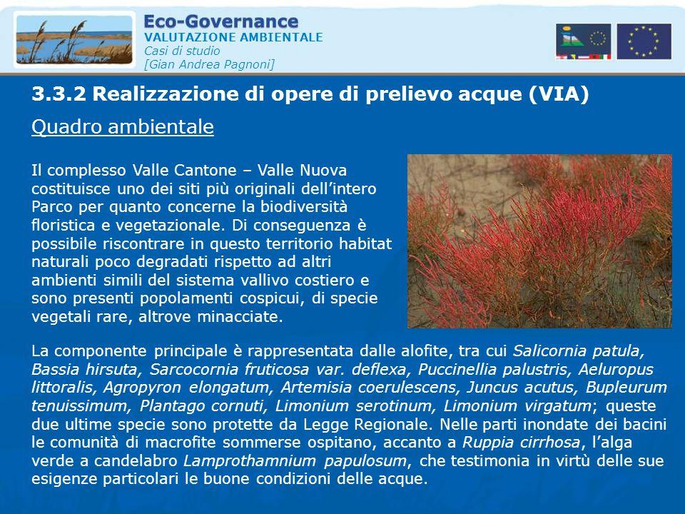 VALUTAZIONE AMBIENTALE Casi di studio [Gian Andrea Pagnoni] Quadro ambientale Il complesso Valle Cantone – Valle Nuova costituisce uno dei siti più or