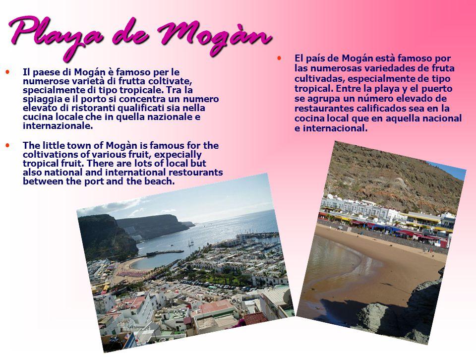 Playa de Mogàn Il paese di Mogán è famoso per le numerose varietà di frutta coltivate, specialmente di tipo tropicale.