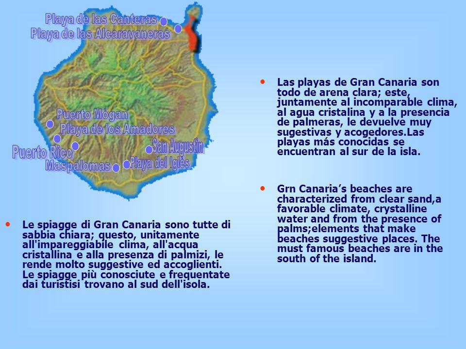 Le spiagge di Gran Canaria sono tutte di sabbia chiara; questo, unitamente all impareggiabile clima, all acqua cristallina e alla presenza di palmizi, le rende molto suggestive ed accoglienti.