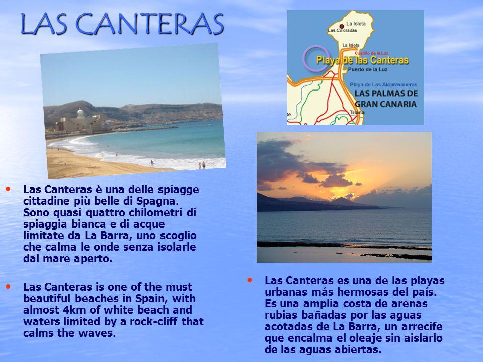 LAS CANTERAS Las Canteras è una delle spiagge cittadine più belle di Spagna.