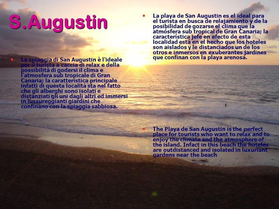 S.Augustin La spiaggia di San Augustin è l ideale per il turista a caccia di relax e della possibilità di godersi il clima e l atmosfera sub tropicale di Gran Canaria; la caratteristica principale infatti di questa località sta nel fatto che gli alberghi sono isolati e distanziati gli uni dagli altri ed immersi in lussureggianti giardini che confinano con la spiaggia sabbiosa.