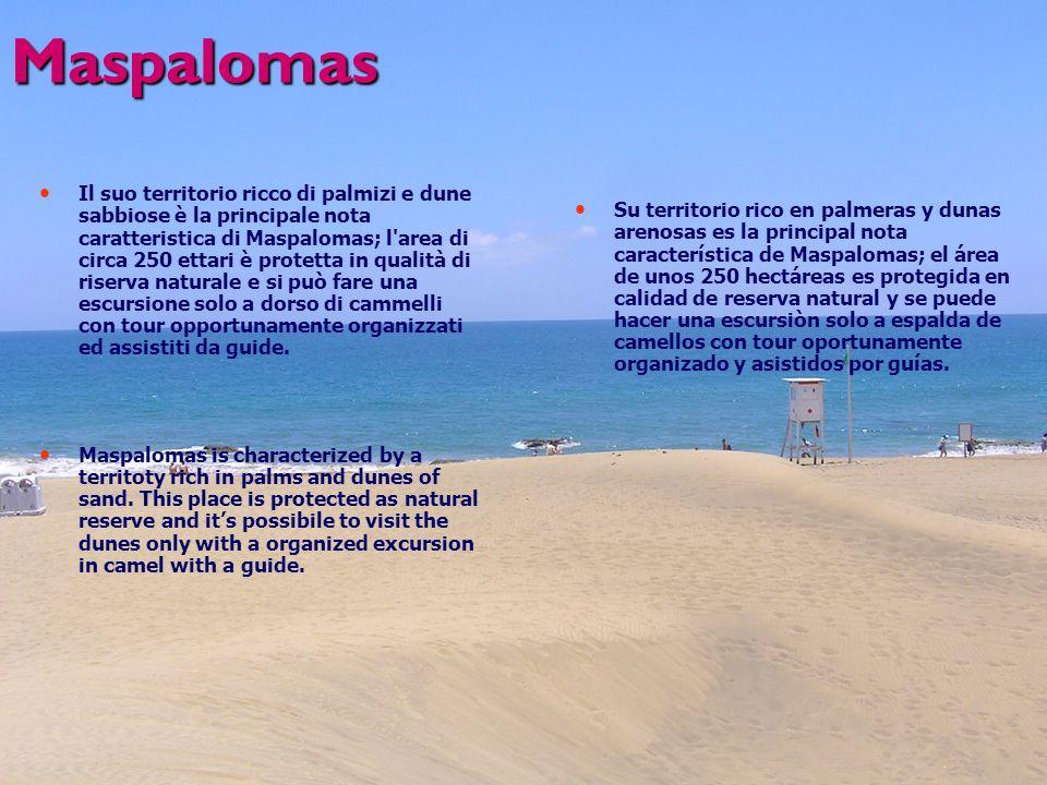Maspalomas Il suo territorio ricco di palmizi e dune sabbiose è la principale nota caratteristica di Maspalomas; l area di circa 250 ettari è protetta in qualità di riserva naturale e si può fare una escursione solo a dorso di cammelli con tour opportunamente organizzati ed assistiti da guide.