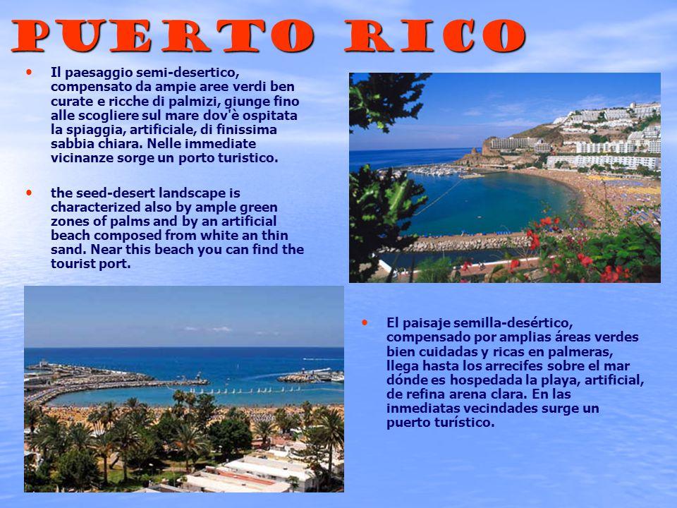 Puerto rico Il paesaggio semi-desertico, compensato da ampie aree verdi ben curate e ricche di palmizi, giunge fino alle scogliere sul mare dov è ospitata la spiaggia, artificiale, di finissima sabbia chiara.
