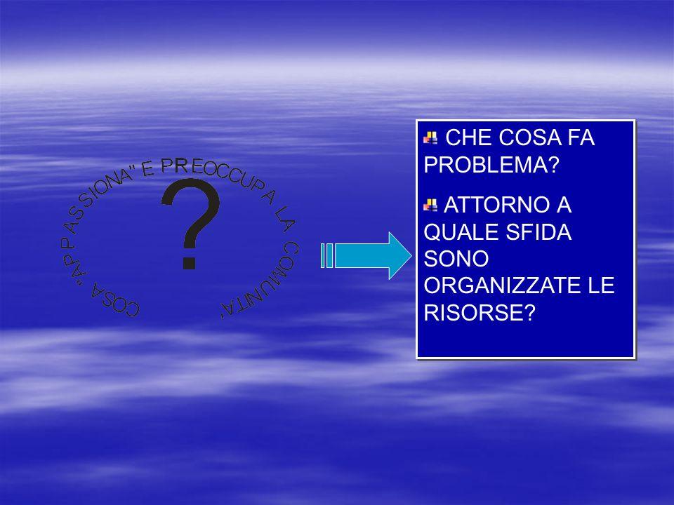 CHE COSA FA PROBLEMA? ATTORNO A QUALE SFIDA SONO ORGANIZZATE LE RISORSE? CHE COSA FA PROBLEMA? ATTORNO A QUALE SFIDA SONO ORGANIZZATE LE RISORSE?