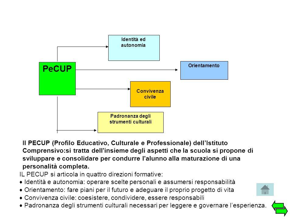 PeCUP Identità ed autonomia Orientamento Convivenza civile Padronanza degli strumenti culturali IL PECUP si articola in quattro direzioni formative: 