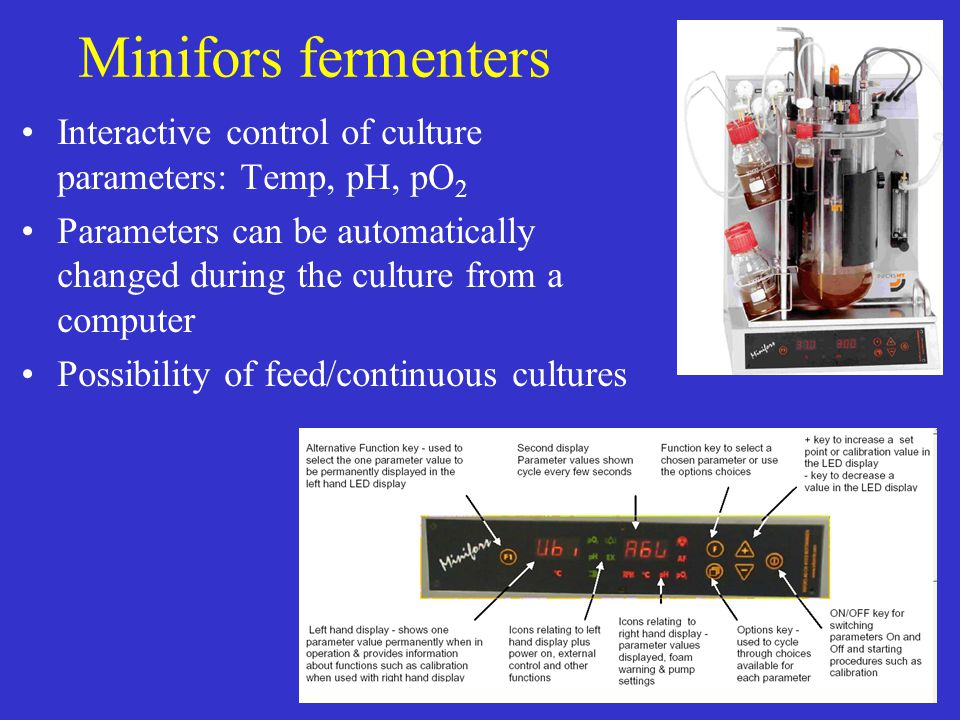 Minifors fermenters Interactive control of culture parameters: Temp, pH, pO 2 Parameters can be automatically changed during the culture from a comput