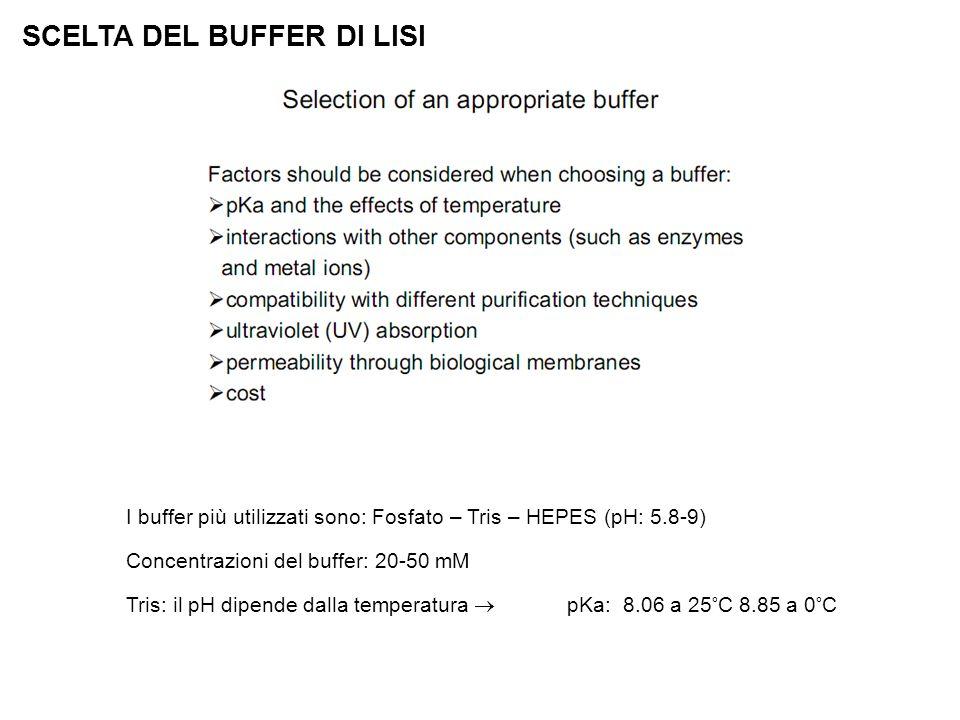 I buffer più utilizzati sono: Fosfato – Tris – HEPES (pH: 5.8-9) Concentrazioni del buffer: 20-50 mM Tris: il pH dipende dalla temperatura  pKa: 8.06