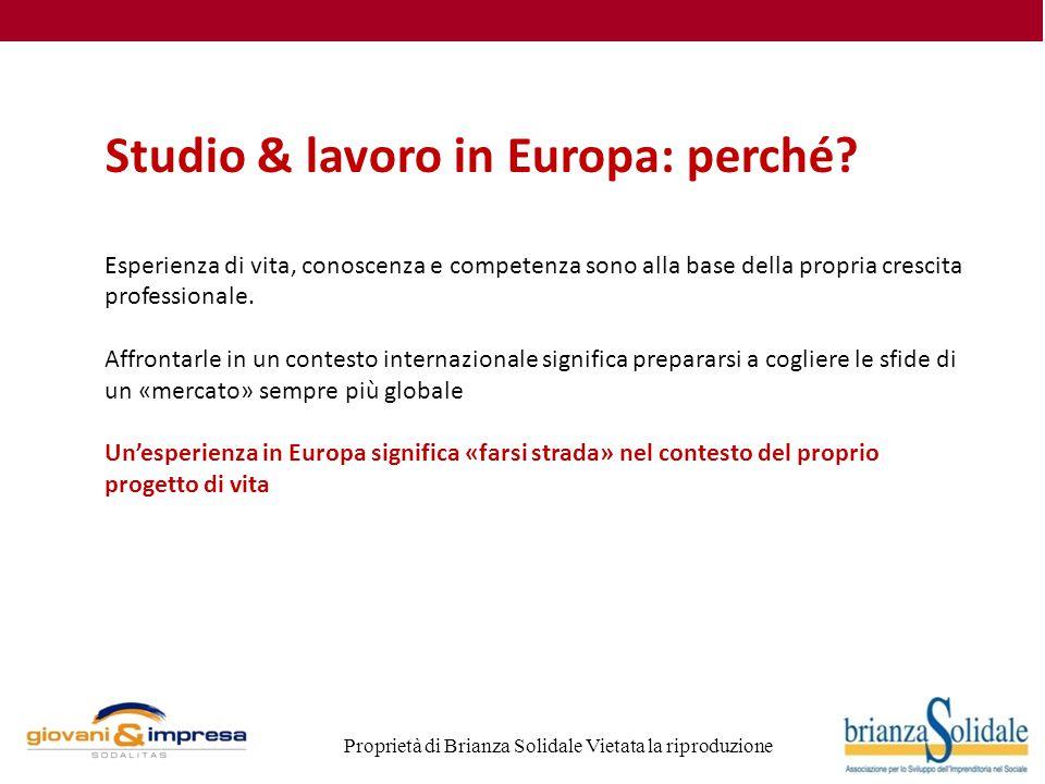 Proprietà di Brianza Solidale Vietata la riproduzione Studio & lavoro in Europa: perché.