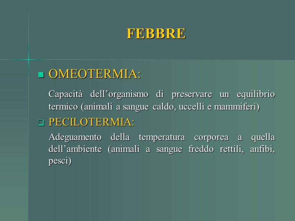 FEBBRE OMEOTERMIA: OMEOTERMIA: Capacità dell'organismo di preservare un equilibrio termico (animali a sangue caldo, uccelli e mammiferi)  PECILOTERMI
