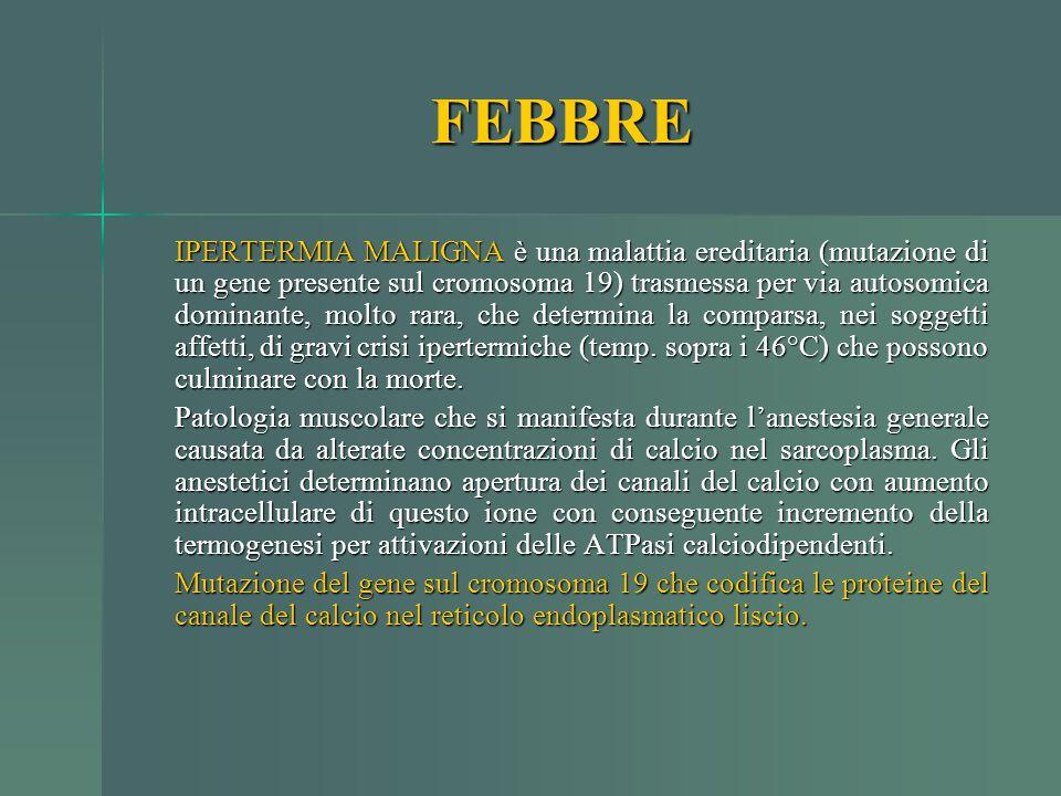 FEBBRE IPERTERMIA MALIGNA è una malattia ereditaria (mutazione di un gene presente sul cromosoma 19) trasmessa per via autosomica dominante, molto rar