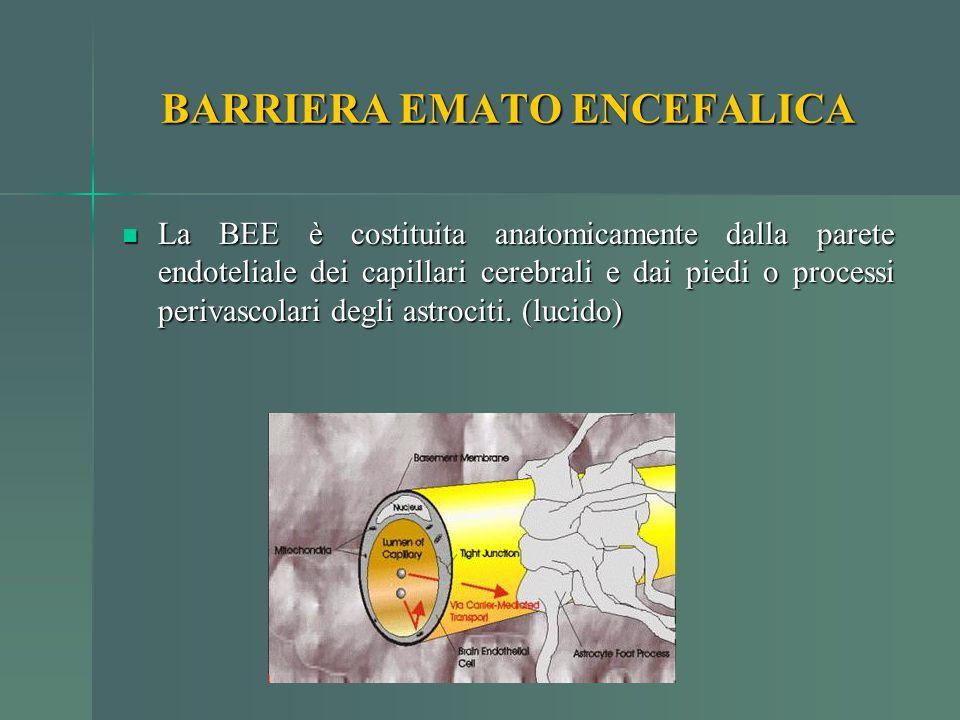BARRIERA EMATO ENCEFALICA La BEE è costituita anatomicamente dalla parete endoteliale dei capillari cerebrali e dai piedi o processi perivascolari deg