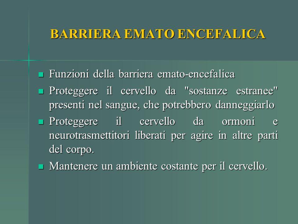 BARRIERA EMATO ENCEFALICA Funzioni della barriera emato-encefalica Funzioni della barriera emato-encefalica Proteggere il cervello da