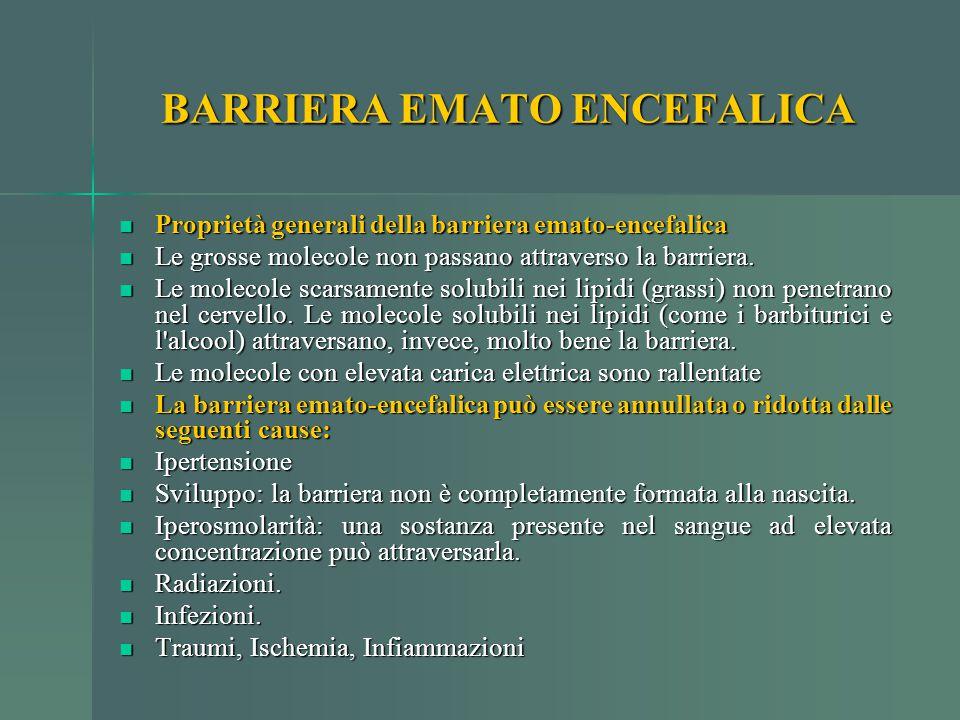 BARRIERA EMATO ENCEFALICA Proprietà generali della barriera emato-encefalica Proprietà generali della barriera emato-encefalica Le grosse molecole non