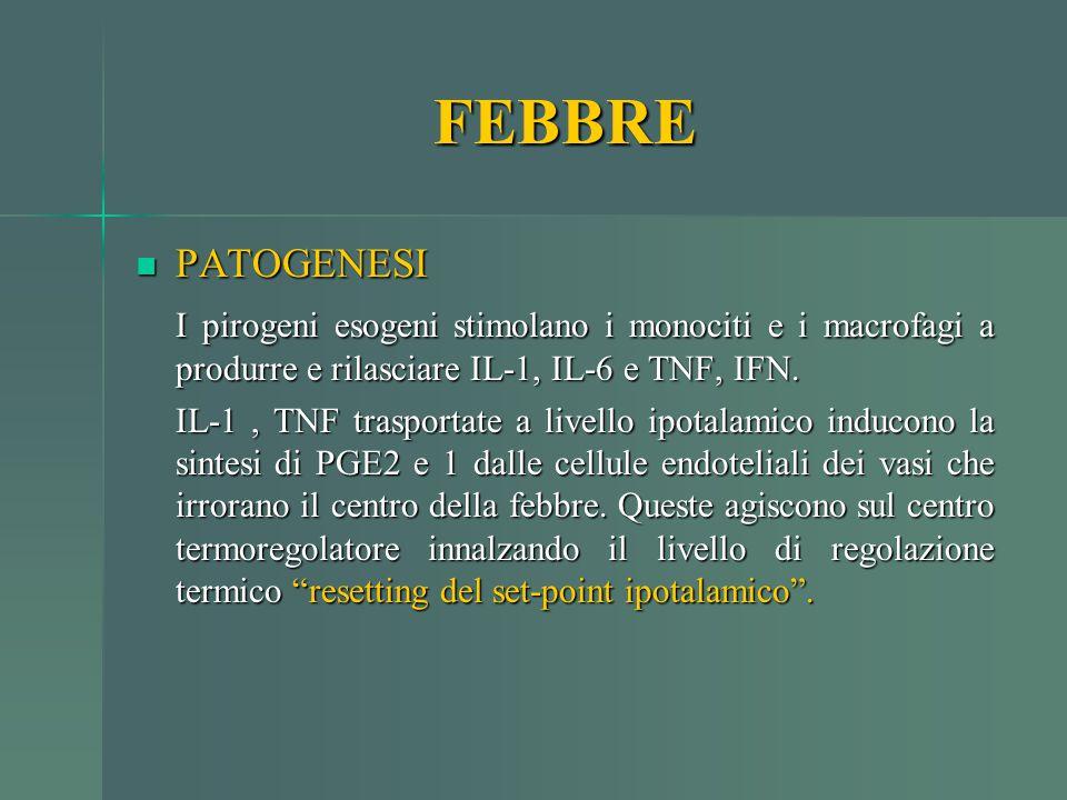 FEBBRE PATOGENESI PATOGENESI I pirogeni esogeni stimolano i monociti e i macrofagi a produrre e rilasciare IL-1, IL-6 e TNF, IFN. IL-1, TNF trasportat