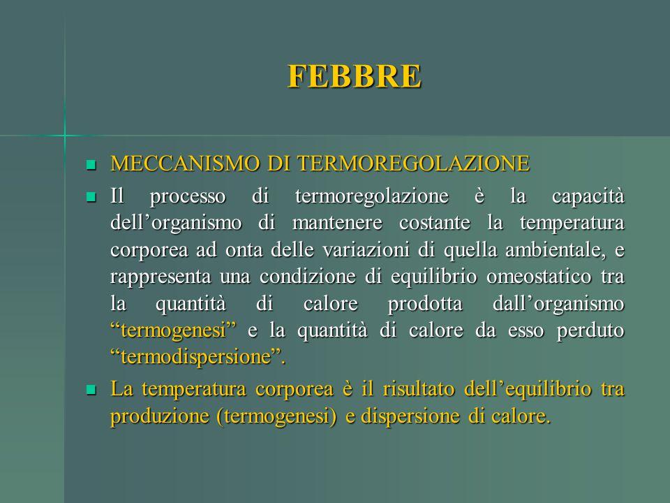 MECCANISMO DI TERMOREGOLAZIONE MECCANISMO DI TERMOREGOLAZIONE Il processo di termoregolazione è la capacità dell'organismo di mantenere costante la te