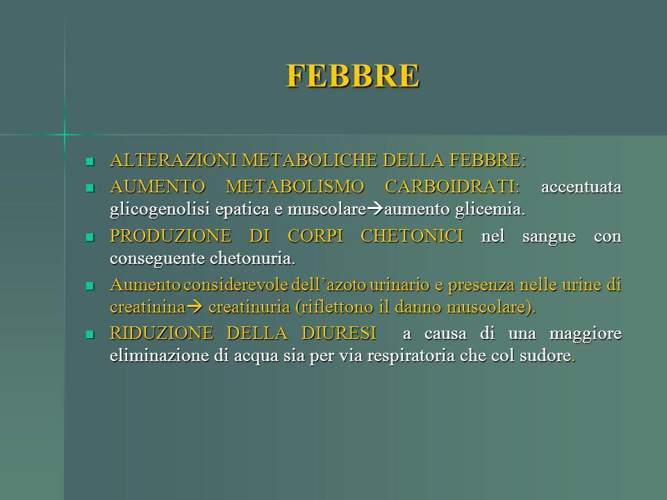 FEBBRE ALTERAZIONI METABOLICHE DELLA FEBBRE: ALTERAZIONI METABOLICHE DELLA FEBBRE: AUMENTO METABOLISMO CARBOIDRATI: accentuata glicogenolisi epatica e