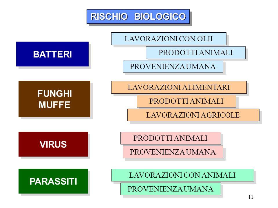 11 RISCHIO BIOLOGICO RISCHIO BIOLOGICO RISCHIO BIOLOGICO RISCHIO BIOLOGICO BATTERI FUNGHI MUFFE FUNGHI MUFFE VIRUS PARASSITI LAVORAZIONI CON OLII PROD