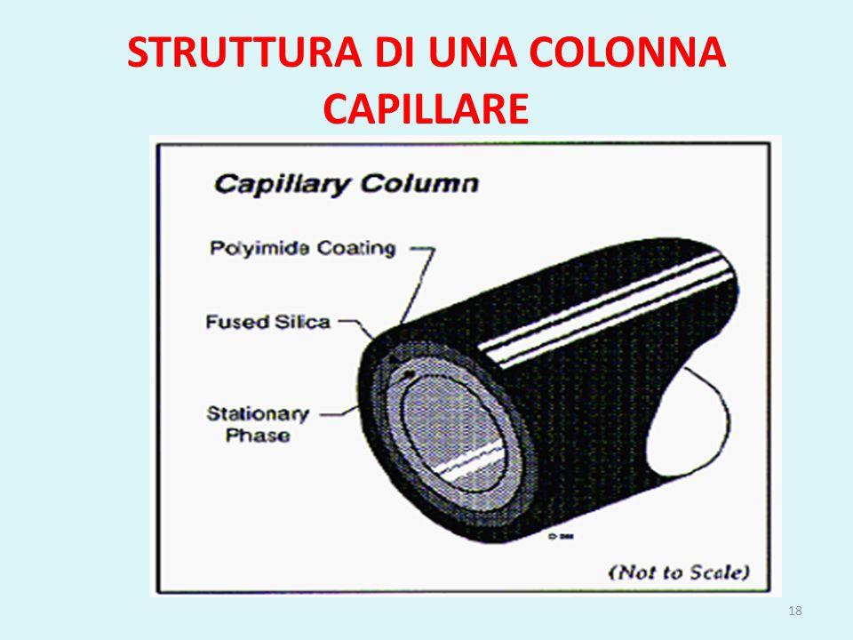 STRUTTURA DI UNA COLONNA CAPILLARE 18