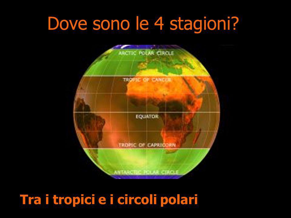 Dove sono le 4 stagioni? Tra i tropici e i circoli polari