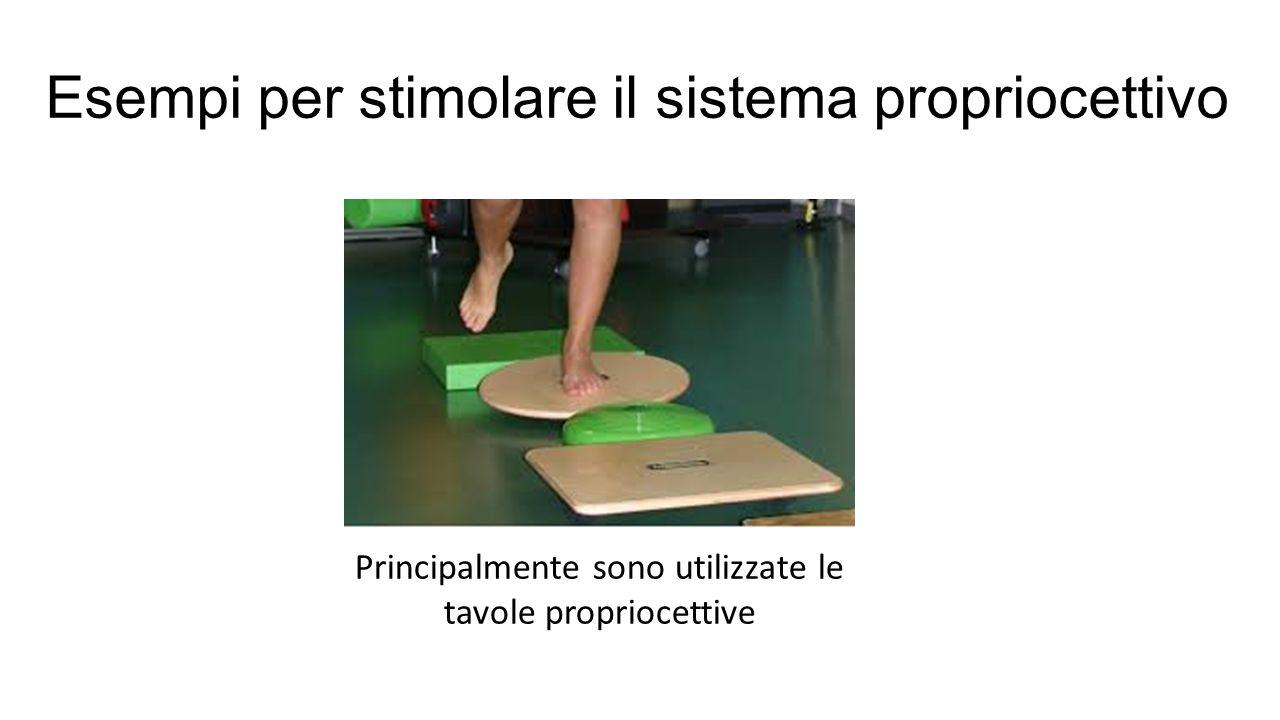 Esempi per stimolare il sistema propriocettivo Principalmente sono utilizzate le tavole propriocettive