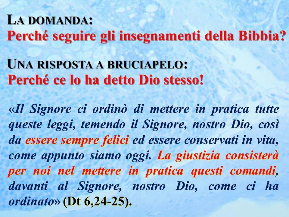 L A DOMANDA : Perché seguire gli insegnamenti della Bibbia? U NA RISPOSTA A BRUCIAPELO : Perché ce lo ha detto Dio stesso!