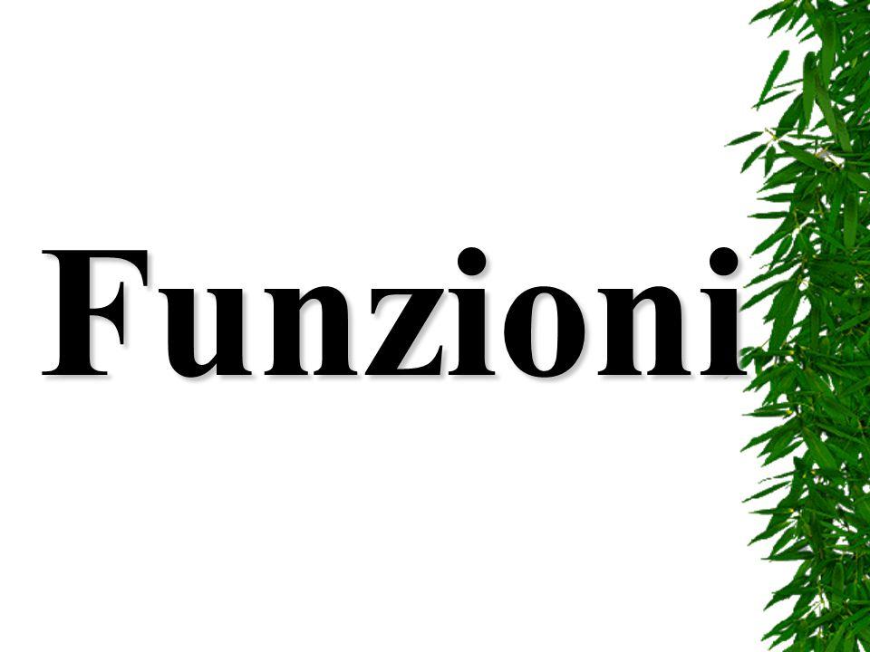 La sintassi generale di una funzione è: