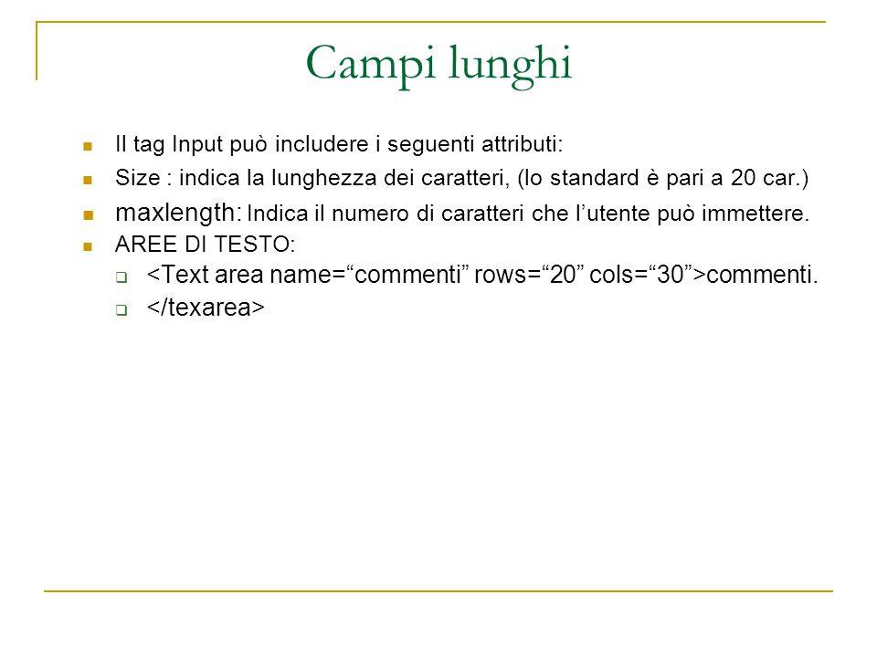 Campi lunghi Il tag Input può includere i seguenti attributi: Size : indica la lunghezza dei caratteri, (lo standard è pari a 20 car.) maxlength: Indica il numero di caratteri che l'utente può immettere.