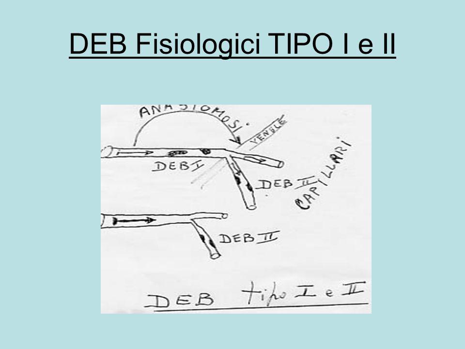 DEB Fisiologici TIPO I e II