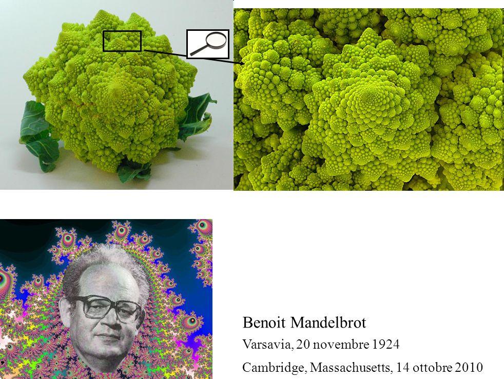 Benoit Mandelbrot Varsavia, 20 novembre 1924 Cambridge, Massachusetts, 14 ottobre 2010