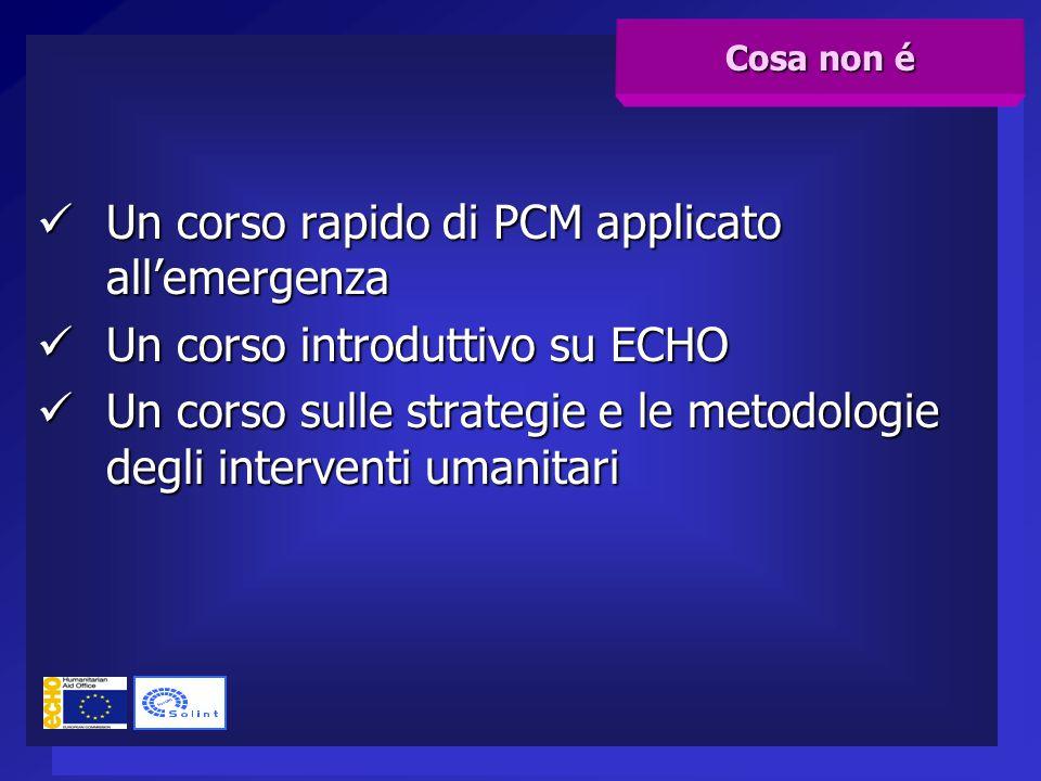 Un corso rapido di PCM applicato all'emergenza Un corso rapido di PCM applicato all'emergenza Un corso introduttivo su ECHO Un corso introduttivo su E