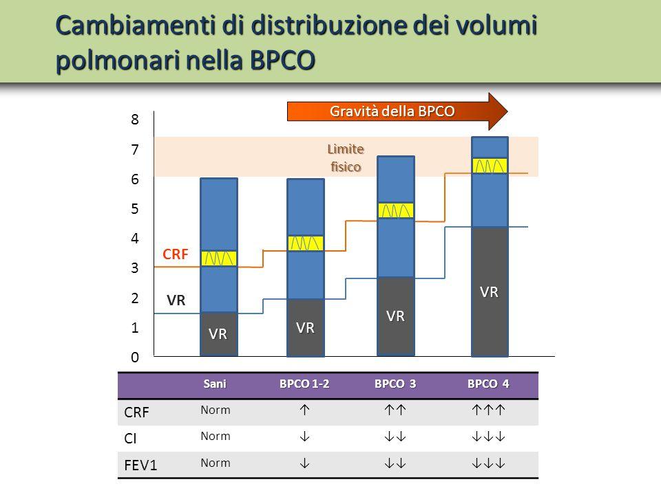 Sani BPCO 1-2 BPCO 3 BPCO 4 CRF Norm↑↑↑↑↑↑ CI Norm↓↓↓↓↓↓ FEV1 Norm↓↓↓↓↓↓ Cambiamenti di distribuzione dei volumi polmonari nella BPCO Gravità della BP