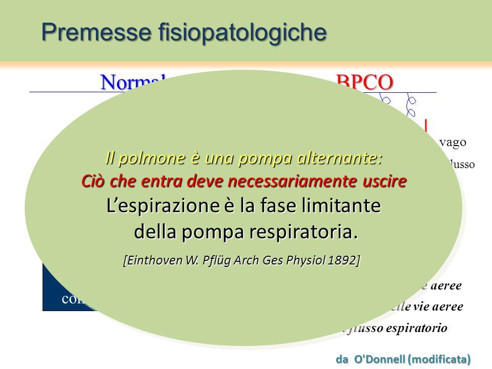 Meccanismi limitanti il flusso espiratorio a volume corrente    Polmone omogeneo Polmone disomogeneo          n )          n )    compliance x resistenza      -  n     -  n   