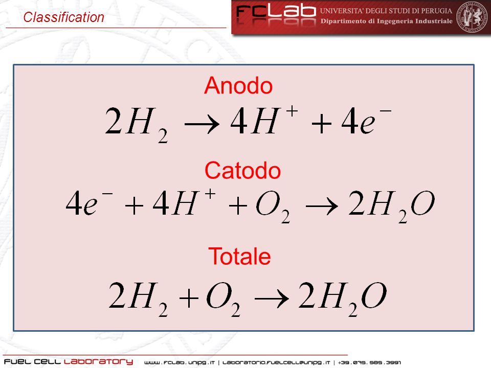Catodo Anodo Totale Classification