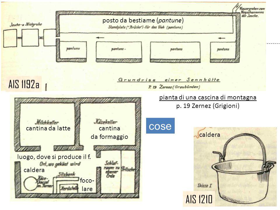 AIS 1210 pianta di una cascina di montagna p. 19 Zernez (Grigioni) AIS 1192a cose posto da bestiame (pantune) cantina da latte cantina da formaggio lu