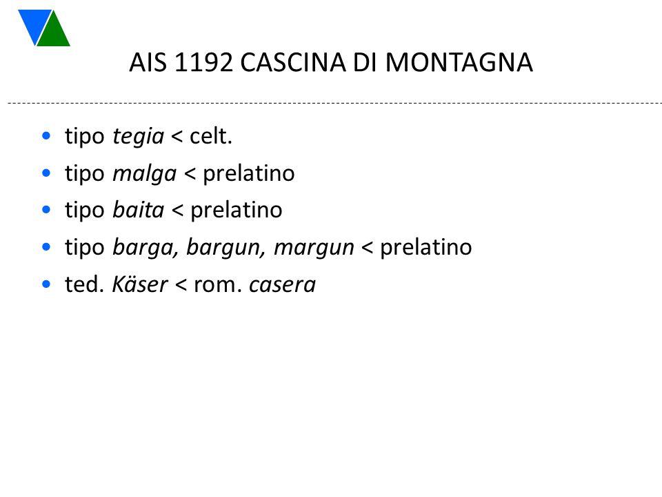 AIS 1192 CASCINA DI MONTAGNA tipo tegia < celt. tipo malga < prelatino tipo baita < prelatino tipo barga, bargun, margun < prelatino ted. Käser < rom.