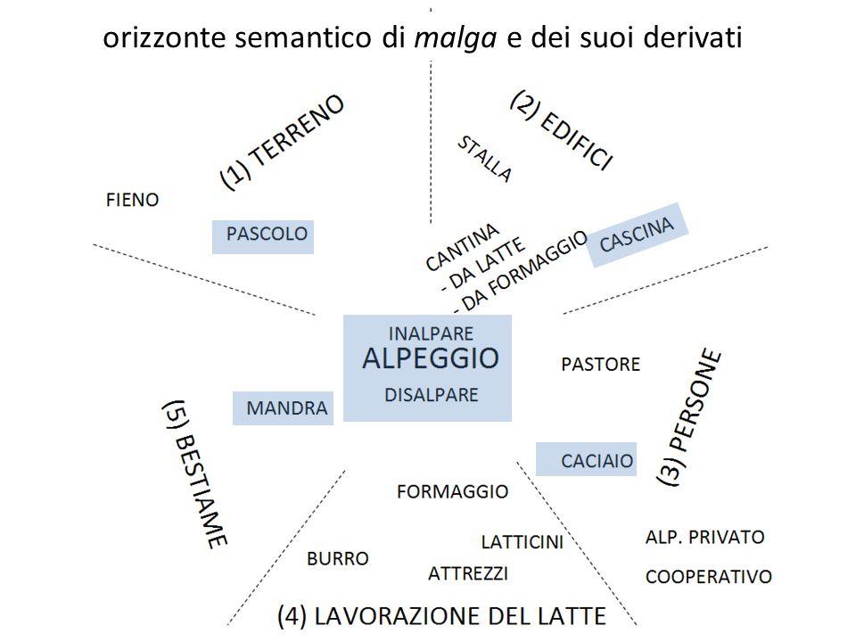 orizzonte semantico di malga e dei suoi derivati