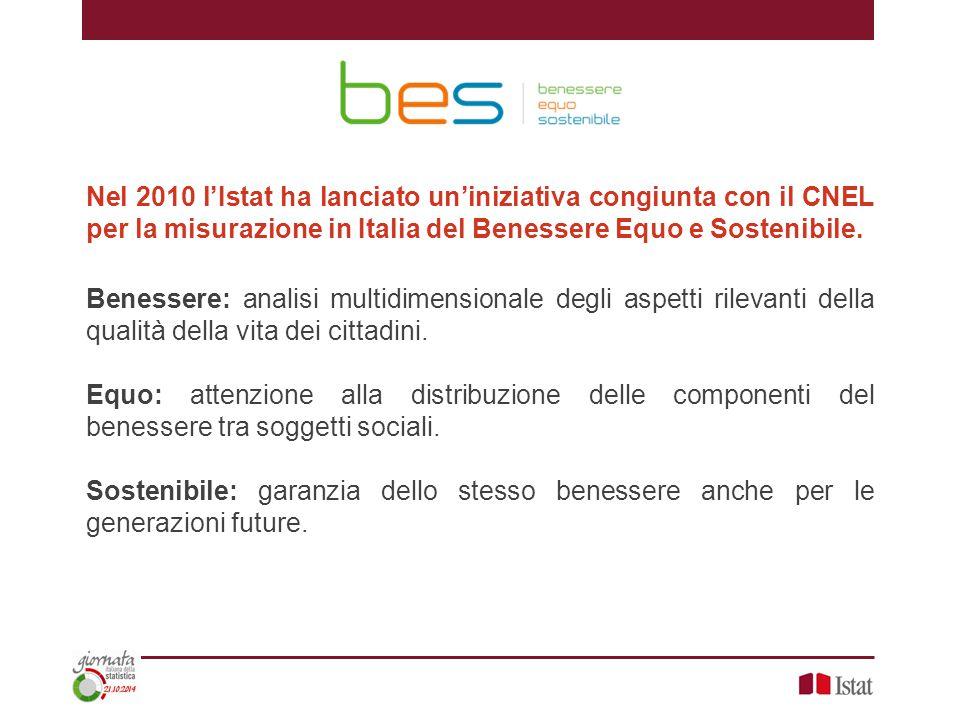 Nel 2010 l'Istat ha lanciato un'iniziativa congiunta con il CNEL per la misurazione in Italia del Benessere Equo e Sostenibile.