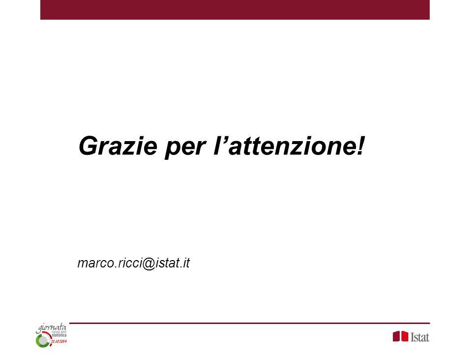 Grazie per l'attenzione! marco.ricci@istat.it