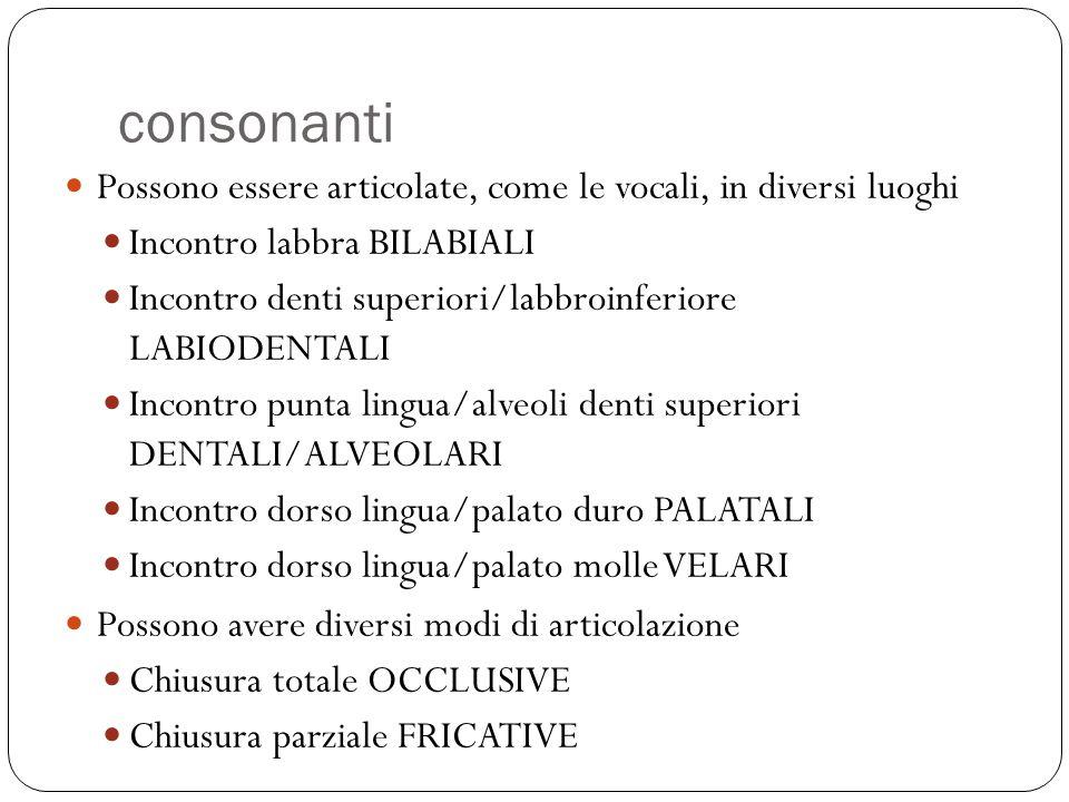 consonanti Possono essere articolate, come le vocali, in diversi luoghi Incontro labbra BILABIALI Incontro denti superiori/labbroinferiore LABIODENTAL