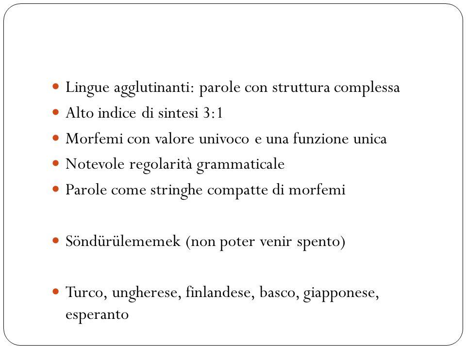 Lingue agglutinanti: parole con struttura complessa Alto indice di sintesi 3:1 Morfemi con valore univoco e una funzione unica Notevole regolarità gra