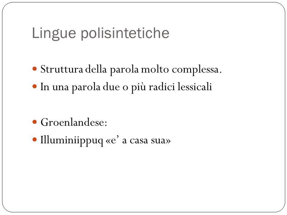 Lingue polisintetiche Struttura della parola molto complessa. In una parola due o più radici lessicali Groenlandese: Illuminiippuq «e' a casa sua»