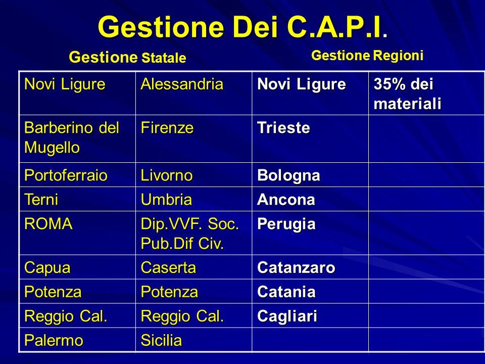Gestione Dei C.A.P.I.