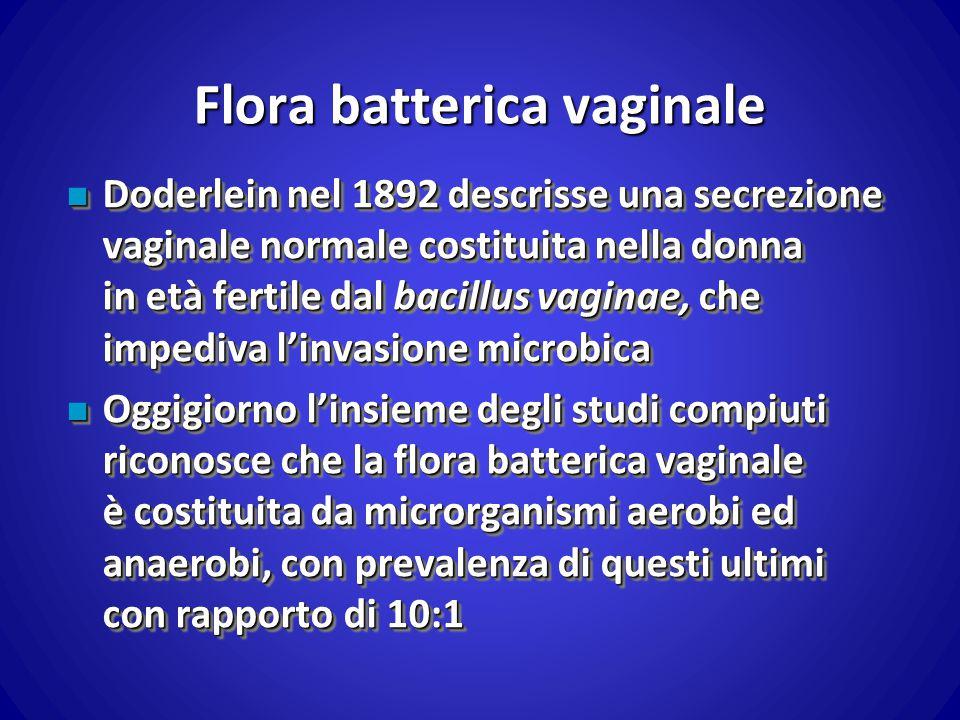 Flora batterica vaginale n Doderlein nel 1892 descrisse una secrezione vaginale normale costituita nella donna in età fertile dal bacillus vaginae, ch