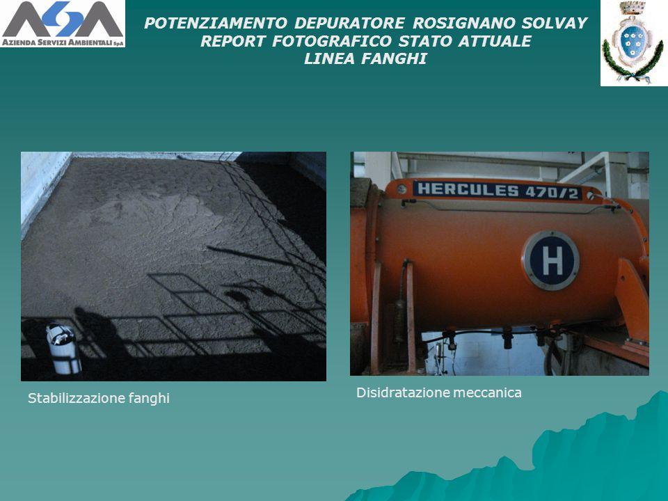 Stabilizzazione fanghi POTENZIAMENTO DEPURATORE ROSIGNANO SOLVAY REPORT FOTOGRAFICO STATO ATTUALE LINEA FANGHI Disidratazione meccanica