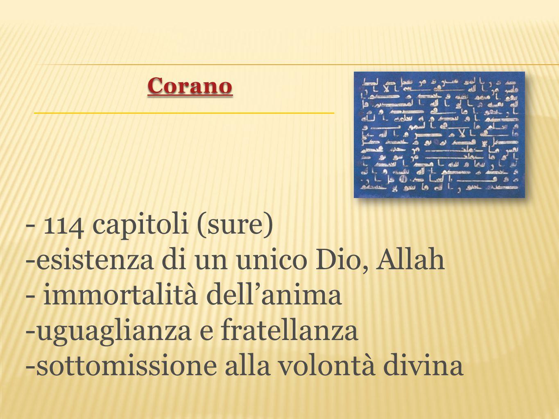 - 114 capitoli (sure) -esistenza di un unico Dio, Allah - immortalità dell'anima -uguaglianza e fratellanza -sottomissione alla volontà divina