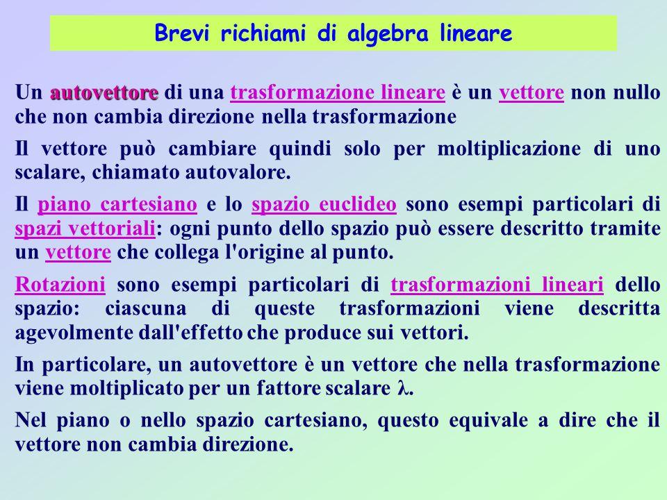 Brevi richiami di algebra lineare autovettore Un autovettore di una trasformazione lineare è un vettore non nullo che non cambia direzione nella trasf