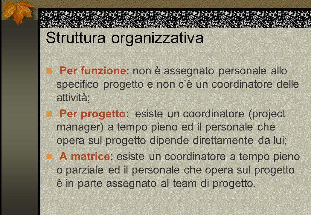 Controllato Centralizzato Il team leader decide sulle soluzioni e sull'organizzazione Comunicazione verticale tra team leader e gli altri membri